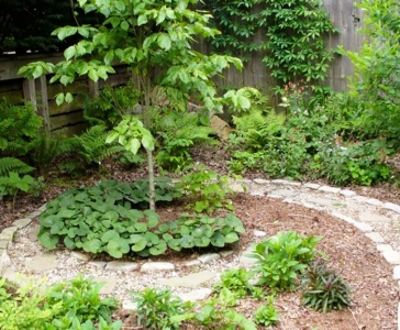 Home Landscapes – Design and Installation
